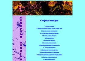nordvitis.ru
