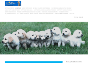 northstardogs.com