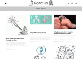 noticing.co