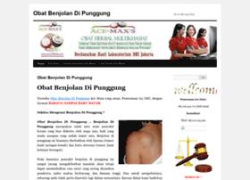 obatbenjolandipunggung88.wordpress.com