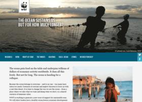 ocean.panda.org