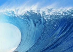 oceancalling.net