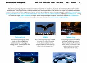 oceanlight.com
