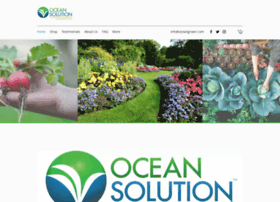 oceansolution.com