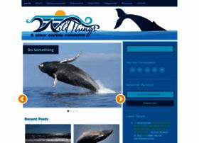 oceanwildthings.com