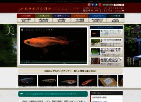 oitamedakabiyori.com
