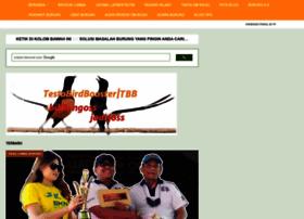 omkicau.com