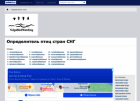 onbird.ru
