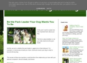 online-dog-training-videos.blogspot.sk