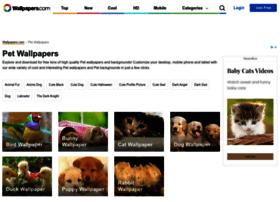 onlypet.com.tw