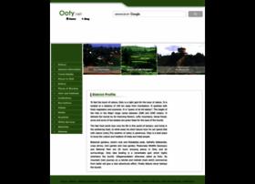 ooty.net