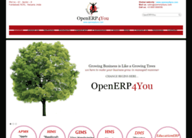openerp4you.in
