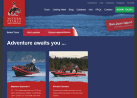 orcawhalewatch.com