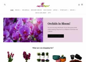 orchid-tree.com