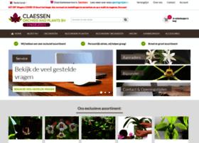 orchideeen-shop.nl