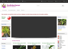 orchideenwlodarczyk.de