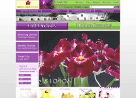 orchids.com