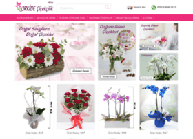orkidecicekcilikrize.com