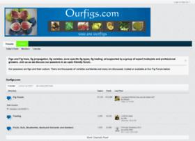 ourfigs.com