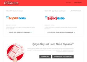 ozcanmarket.com