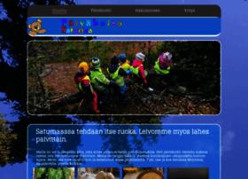 paivahoito-satumaa.fi