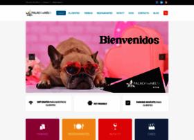 palaciodehielo.com