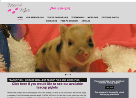 pamperedpiglets.com