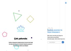 pandorateknoloji.com
