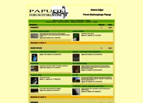 papugi.webd.pl