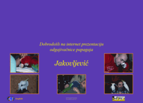 parrotfactory.com
