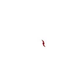 parrucchenapoli.net