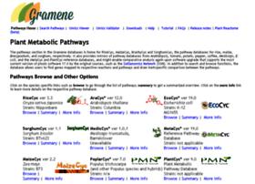 pathway.gramene.org