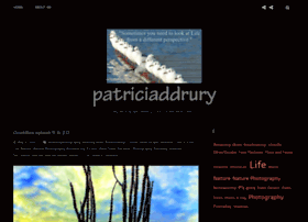 patriciaddrury.com