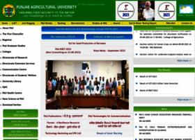 pau.edu
