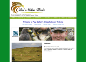 paulmeltonhawks.co.uk