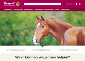 pavo.nl