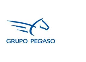 pegasobandaancha.com