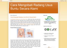 pengobatanalamiradangususbuntu.blogspot.com