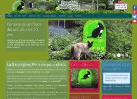 pension-chats.com