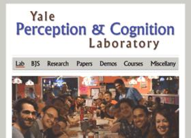 perceptionexperiments.net