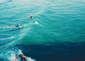 perfectsurfboard.com