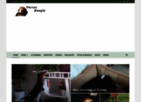 perros-beagle.com