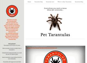 pet-tarantulas.com