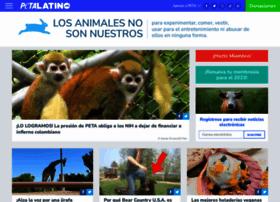 petalatino.com