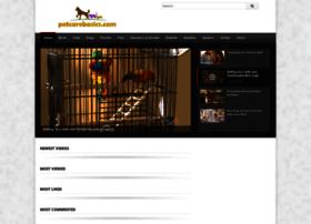 petcarebasics.com