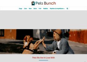 petsbunch.com