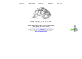 pettortoise.co.uk