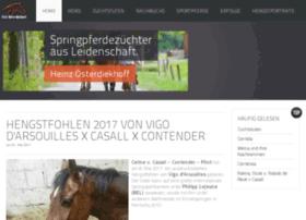 pferdewebdesign.de