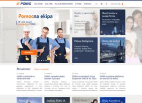 pgnig.pl