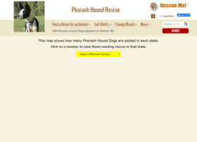 pharaohhound.rescueme.org